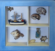 Framed Sea Shells